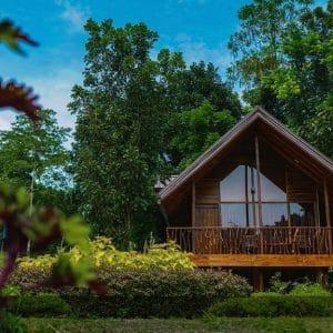 Botanical gardens Kandy