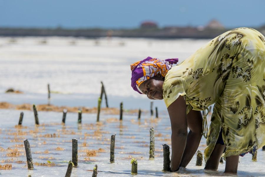 Jongerenreis Tanzania Zanzibar