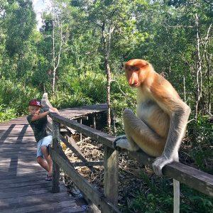 Borneo rondreis